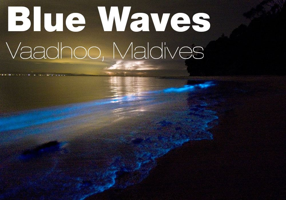 blue-waves1