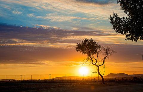 Johannessburg. South Africa