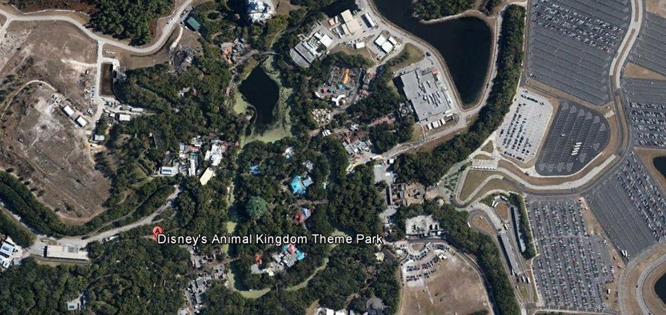 Disney's Animal Kingdom, Florida, USA