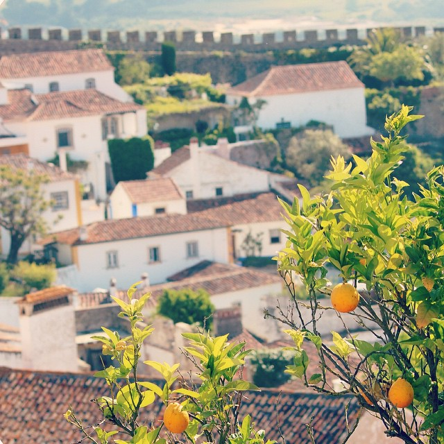 Walled Town of Obidos