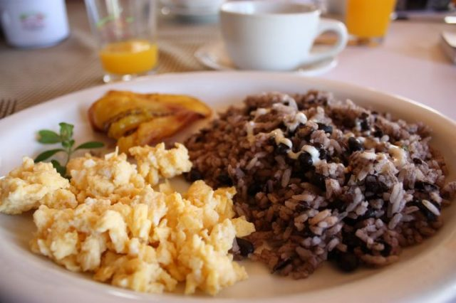 Gallo Pinto Images