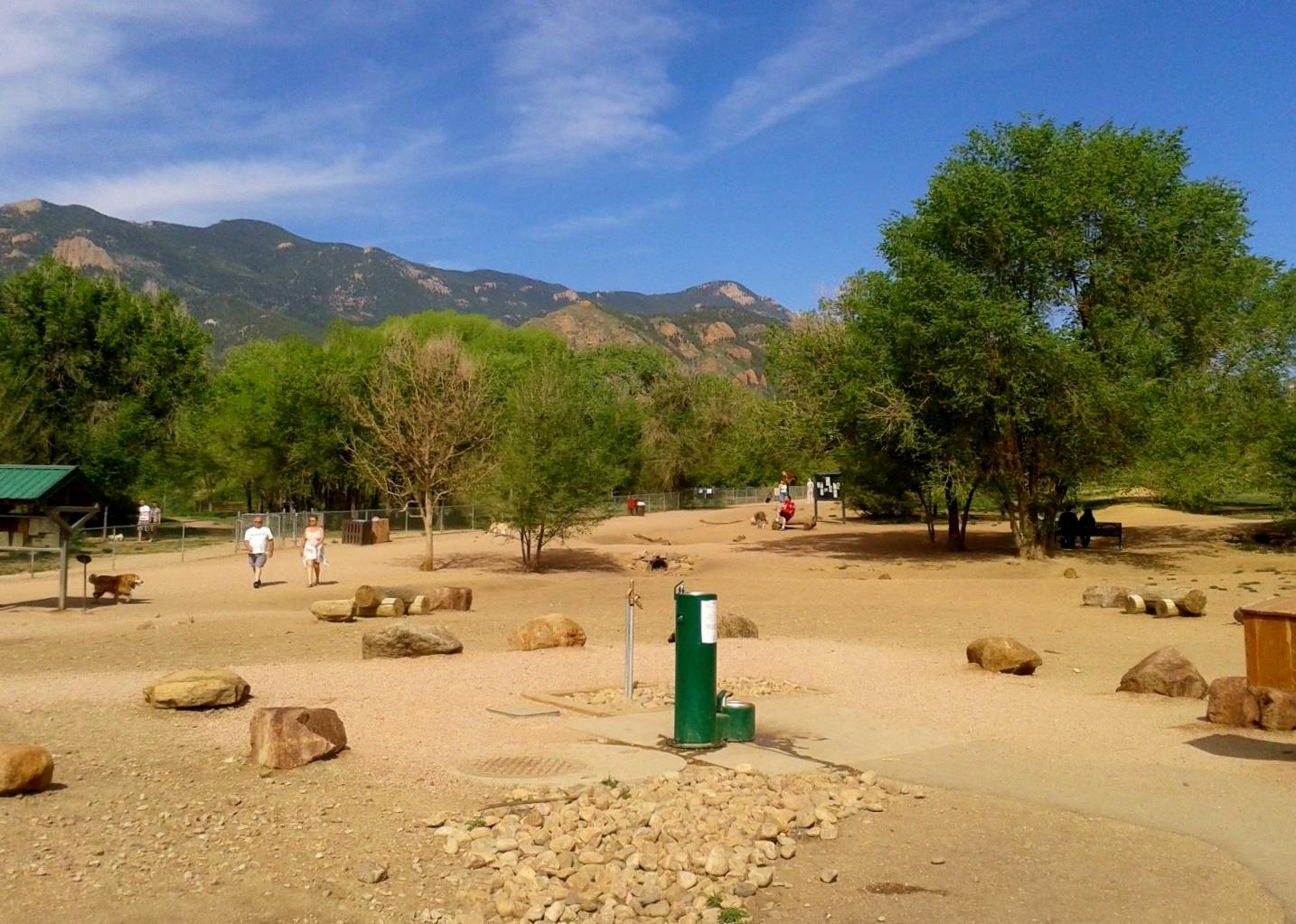 Free Dogs Colorado Springs