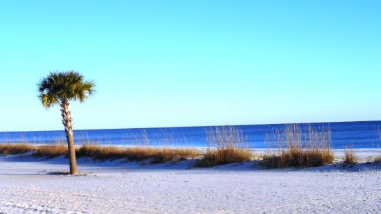 Biloxi Beaches Close to New Orleans