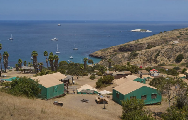Campsite at Catalina