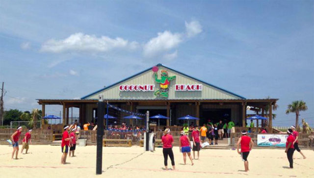 Coconut Best Beaches near New Orleans