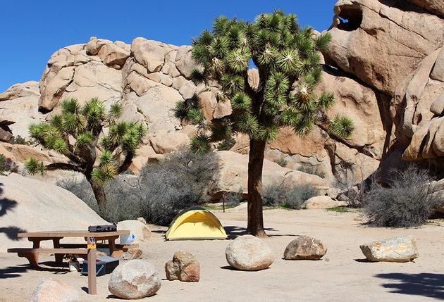 Jumbo Rock Campsite