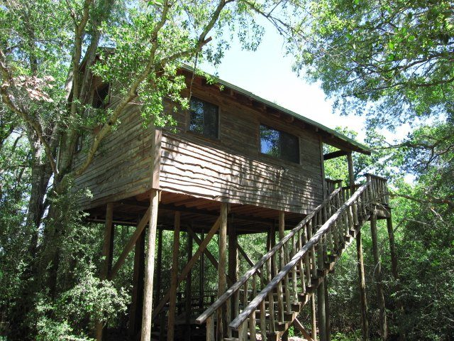 Magical Tree House Cottage in Texas Vacations