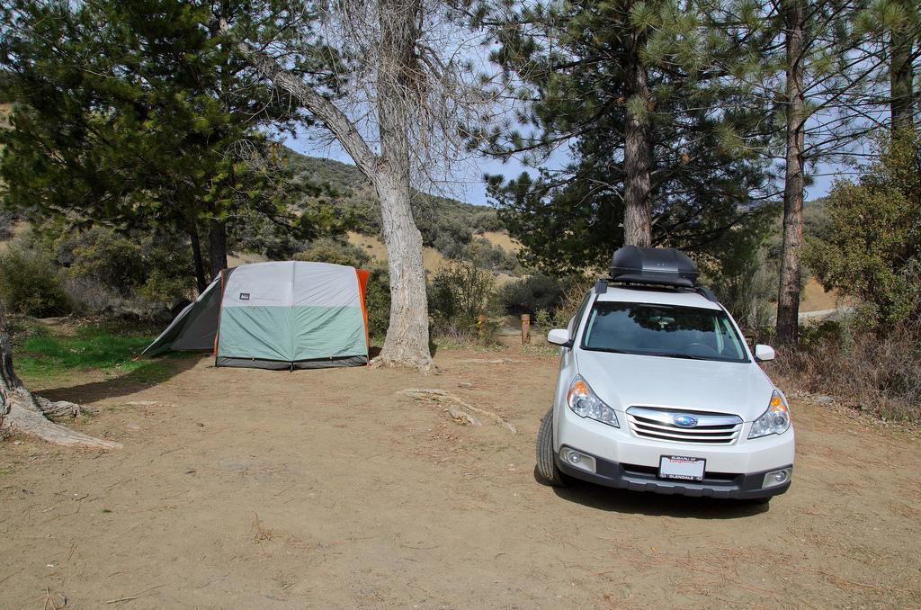 Southern California Dog Friendly Beach Camping