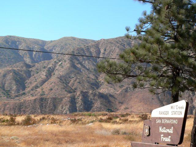 San Bernardino Campsite
