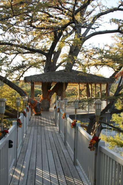 Texas Tree House Frio River Tree Top