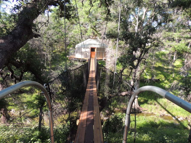 Texas Tree House Lofthaven