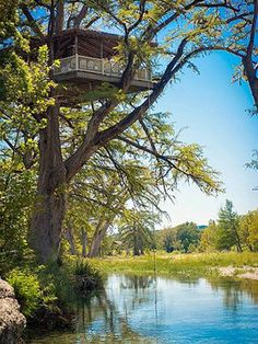 Tree House Rentals Texas Frio River Treetop