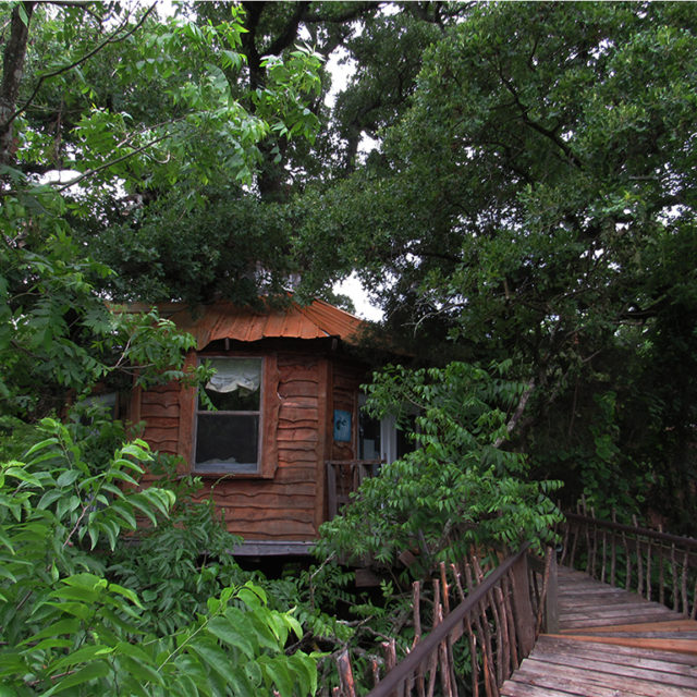 Tree House Rentals in Texas Savannah's Meadow