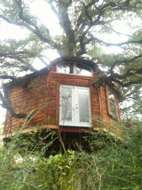 Tree House Texas Savannah's Meadow