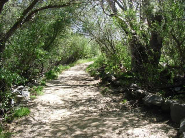 Waterfall Hikes in San Diego Los Penasquitos Canyon Trail