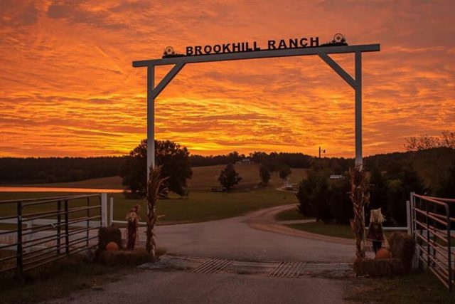 Brookhill Ranch Best Camping in Arkansas