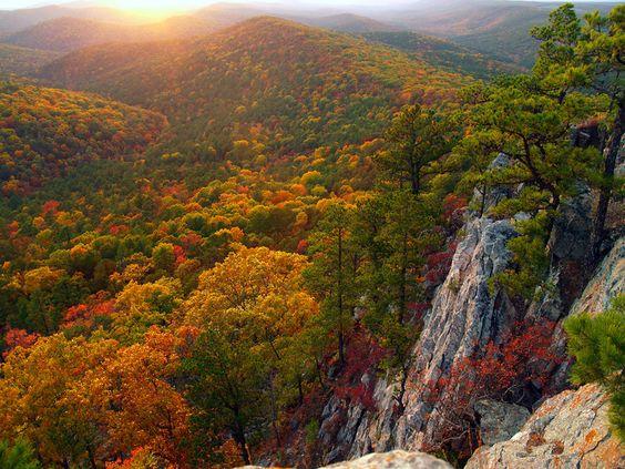 Ouachita National Forest Oklahoma