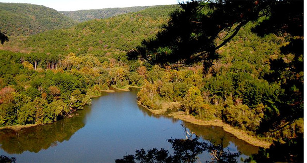 Ozark–St. Francis National Forest Camping Arkansas