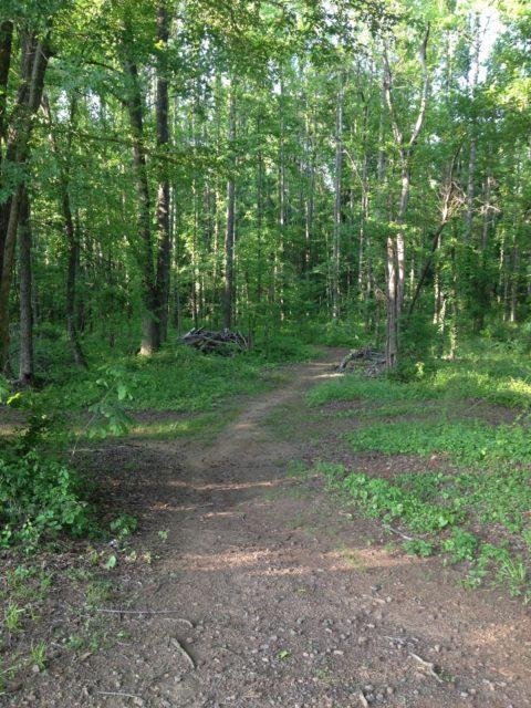 Spadra Park Arkansas Camping
