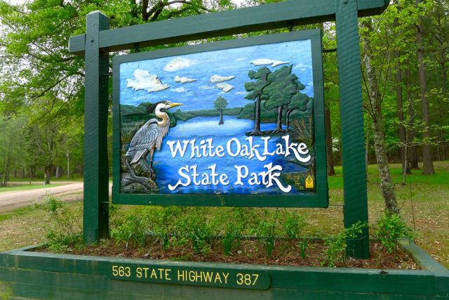 White Oak Lake State Park Arkansas Camping