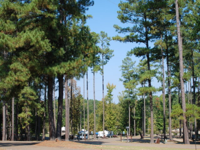 White Oak Lake State Park Camping Arkansas