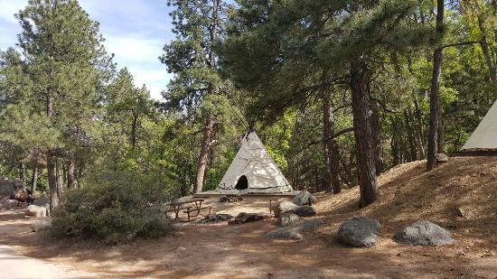 National Parks of Arizona Hualapai Mountain Park