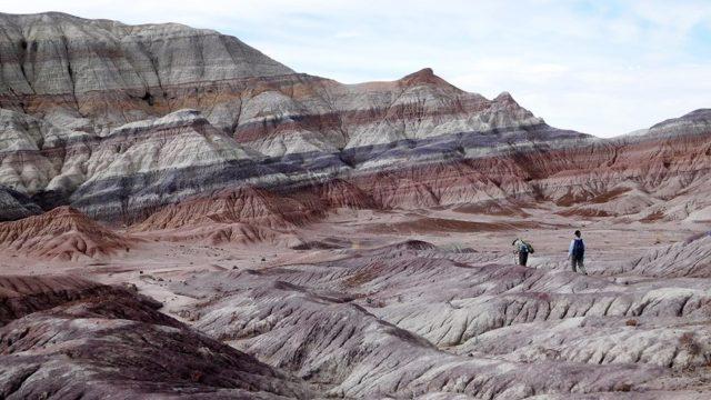 Petrified National Park Arizona