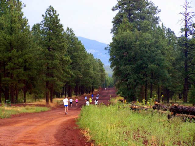 Flagstaff AZ Hiking Road Trail