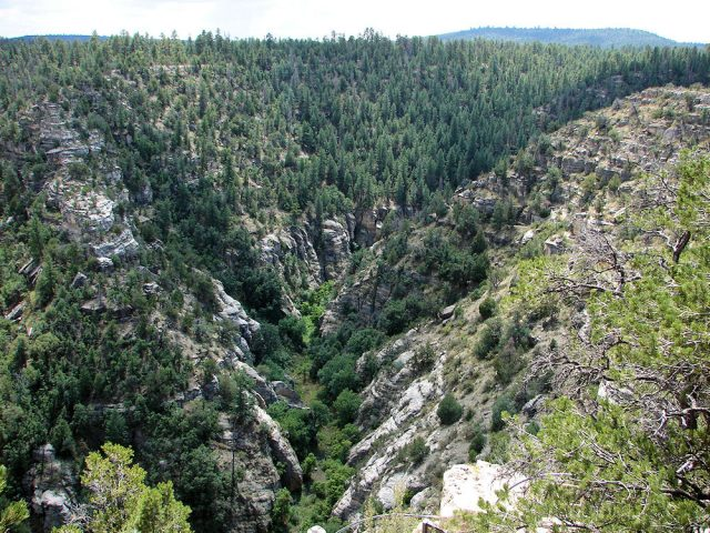 Flagstaff Hikes Walnut Canyon Trail