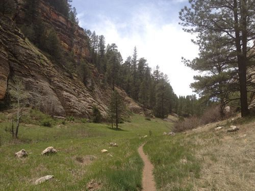 Hiking Trails in Flagstaff AZ Oldham