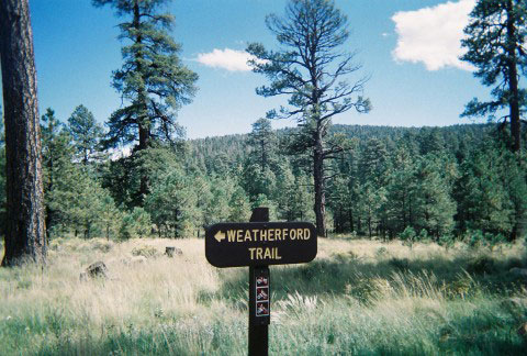 Hiking Trails in Flagstaff Weatherford