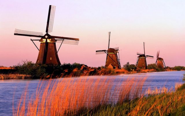 Amsterdam Day Trips Kinderdijk