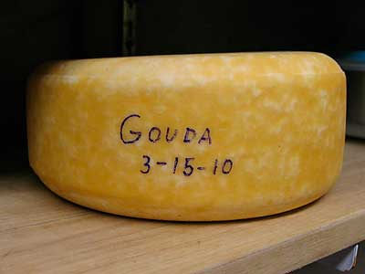 Day Trip from Amsterdam Gouda