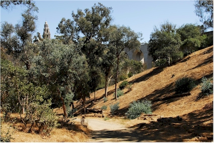 Hiking Trails in San Diego County Balboa Park