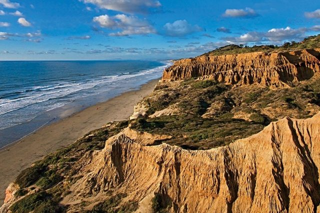 Hiking Trails in San Diego Torrey Pines State Reserve
