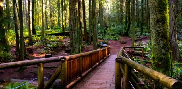 Day Trips from Seattle Bainbridge Island