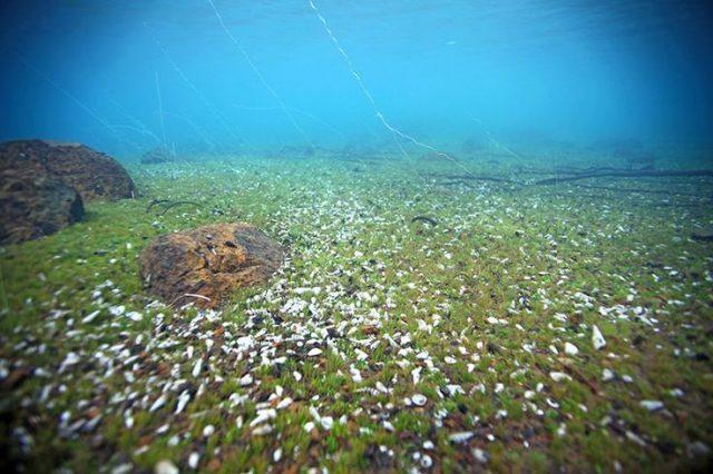 Deepest Lake Matano