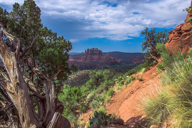 Hiking Trails in Sedona Airport Loop Trail