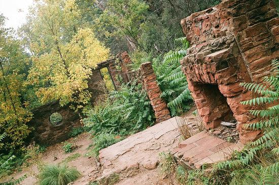 West Fork Hike Sedona