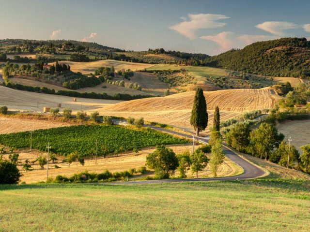 Day Trip Florence Val d'Orcia