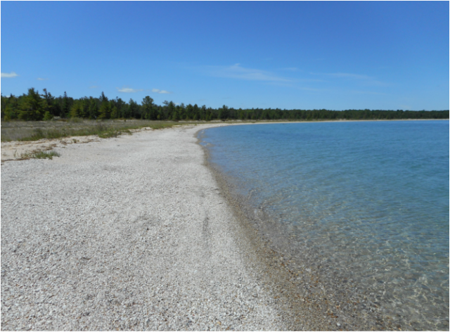 Beaches Michigan Rogers City