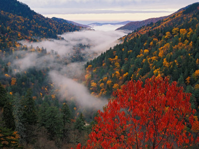 Weekend Trips near Atlanta Great Smoky Mountains National Park
