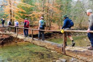 Alabama Hiking Trails