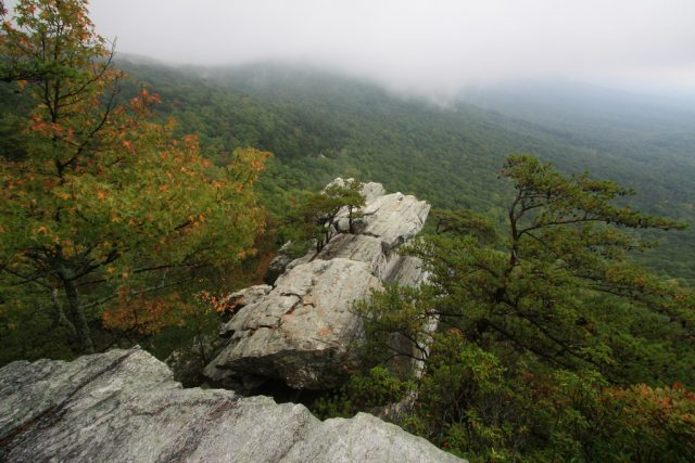 Hiking Cheaha State Park Alabama