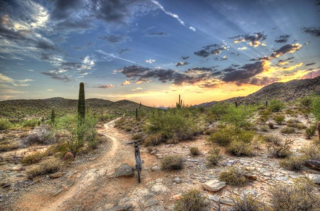 Hiking Trails in Phoenix South Mountain Park