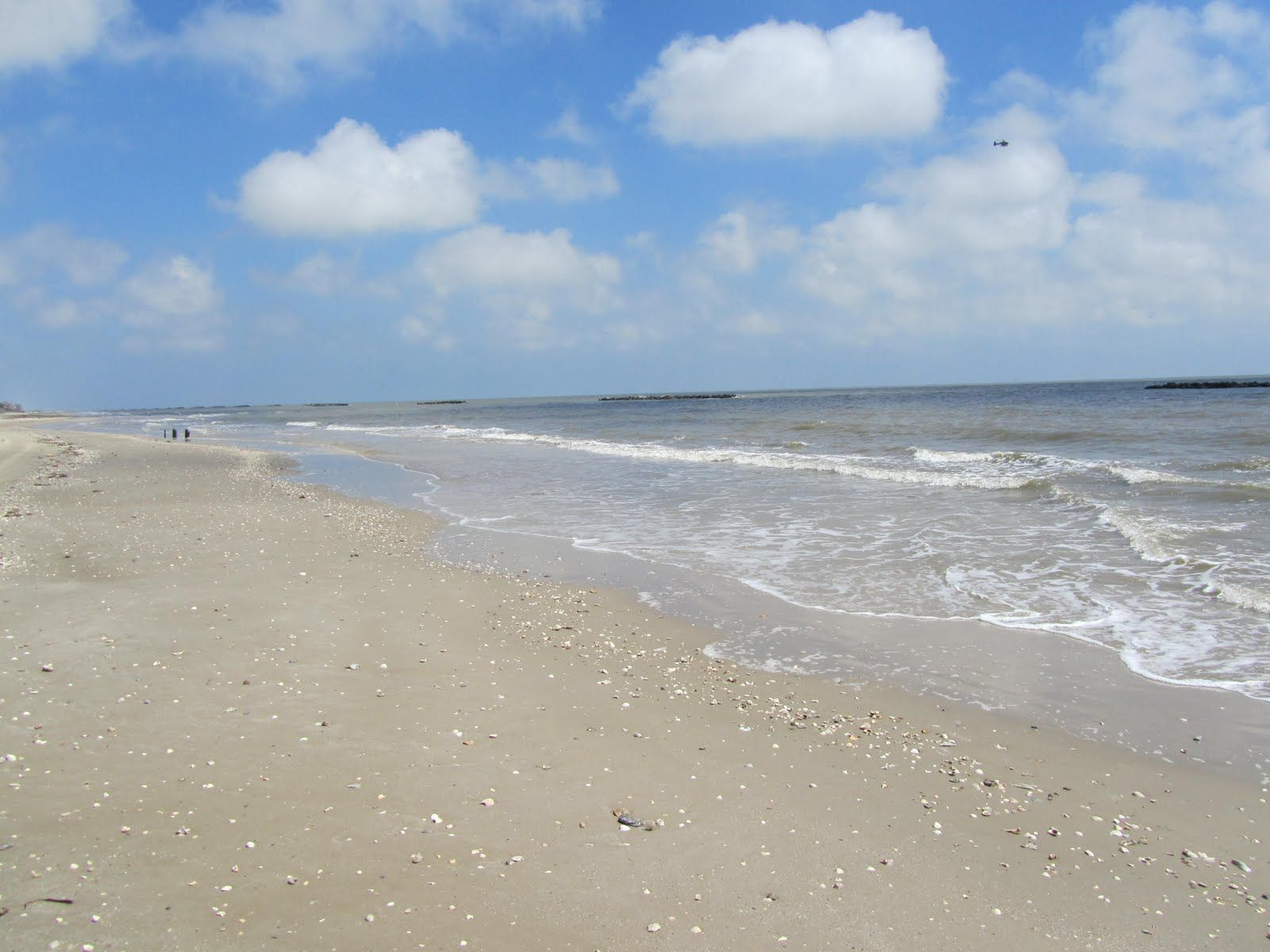 Best Holly Beach Louisiana Beaches