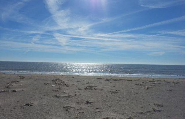 Louisiana Beach North Beaches