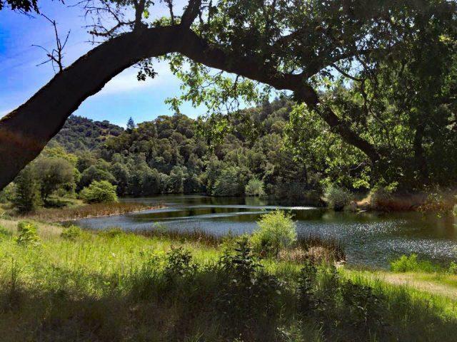 Phoenix Arizona Lake Hiking Trail