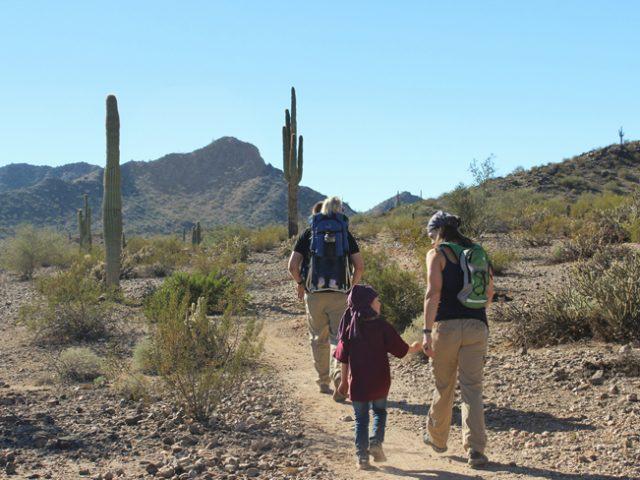 Phoenix Hiking Trail Ballantine East