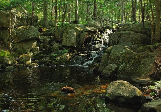 Best Trails for Hiking in Maine ME USA